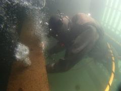 知りたい!潜水工事のいろいろ
