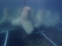 海洋調査はどんなシーンで活躍するの?