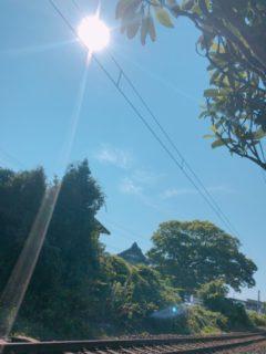今日も猛暑の中頑張ってます!